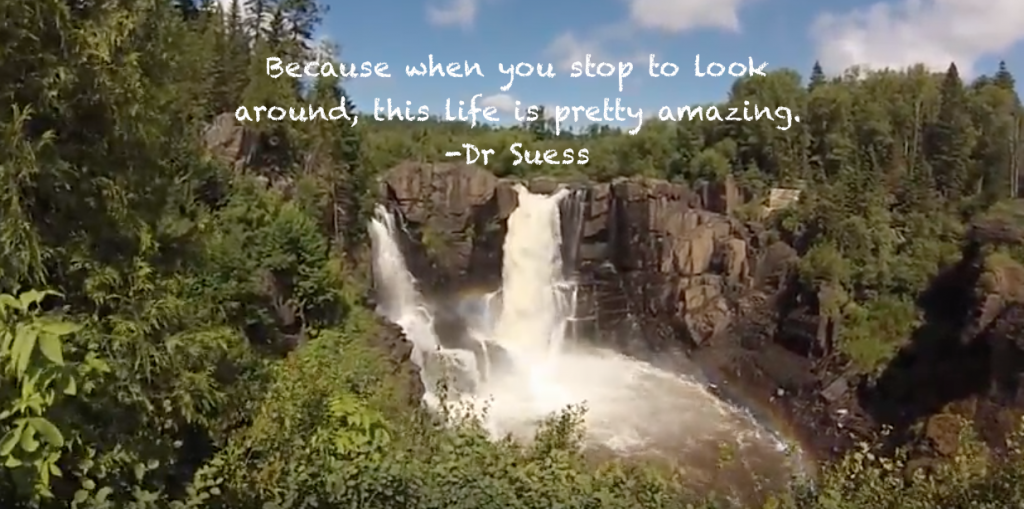 Because when you stop and look around, this life is pretty amazing by Dr Suess